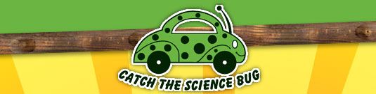 Catch the Science Bug!